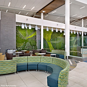 Edmonton Air Terminal Vertical Garden