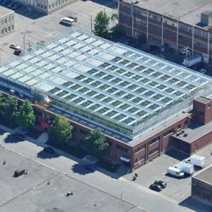 Lufa Farms rooftop greenhouse.